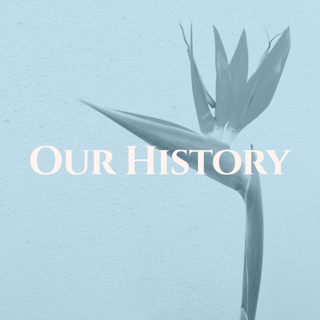 Learn about the history of something bleu bridal including its origins as bird of paradise